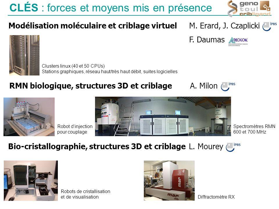 CLÉS : forces et moyens mis en présence Modélisation moléculaire et criblage virtuel M. Erard, J. Czaplicki F. Daumas RMN biologique, structures 3D et
