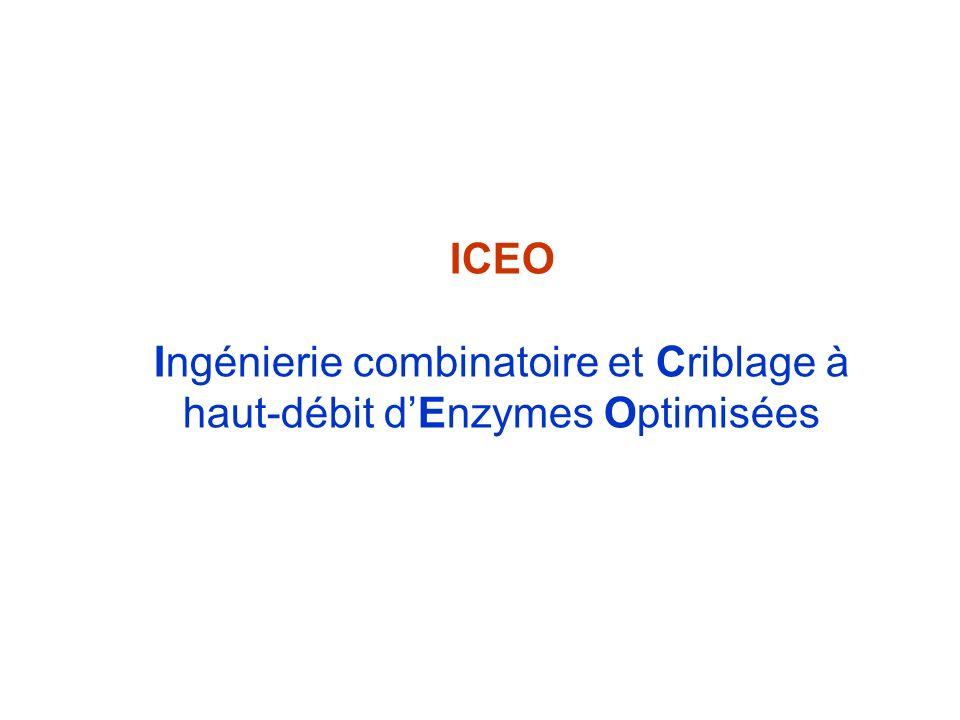 ICEO Ingénierie combinatoire et Criblage à haut-débit dEnzymes Optimisées