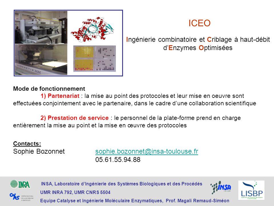 ICEO INSA, Laboratoire dIngénierie des Systèmes Biologiques et des Procédés UMR INRA 792, UMR CNRS 5504 Equipe Catalyse et Ingénierie Moléculaire Enzy
