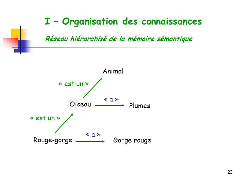 23 I – Organisation des connaissances Réseau hiérarchisé de la mémoire sémantique Rouge-gorge Oiseau Gorge rouge Plumes Animal « est un » « a »