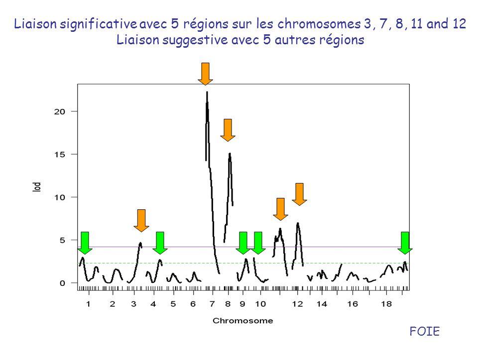 Liaison significative avec 5 régions sur les chromosomes 3, 7, 8, 11 and 12 Liaison suggestive avec 5 autres régions FOIE