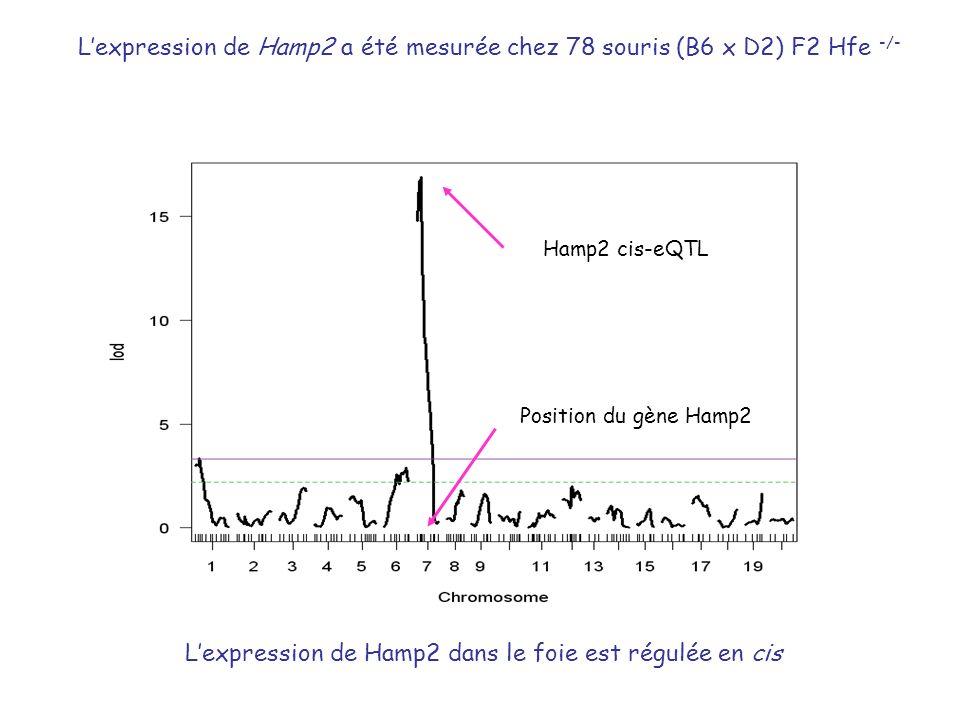Lexpression de Hamp2 dans le foie est régulée en cis Position du gène Hamp2 Hamp2 cis-eQTL Lexpression de Hamp2 a été mesurée chez 78 souris (B6 x D2)
