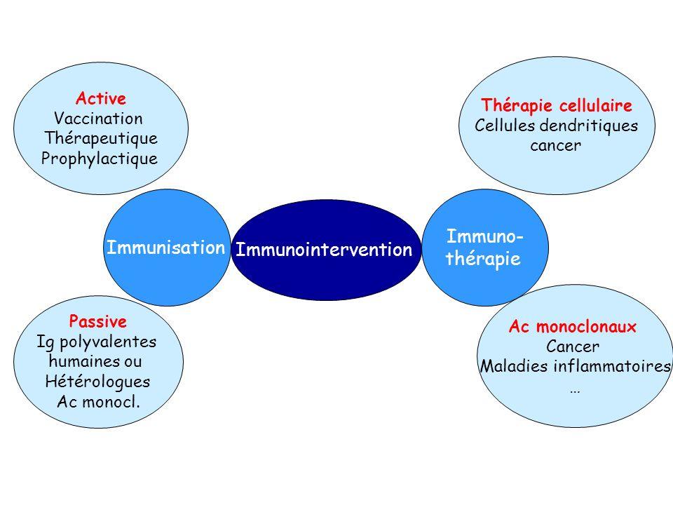 Immunointervention Immuno- thérapie Thérapie cellulaire Cellules dendritiques cancer Ac monoclonaux Cancer Maladies inflammatoires … Immunisation Acti