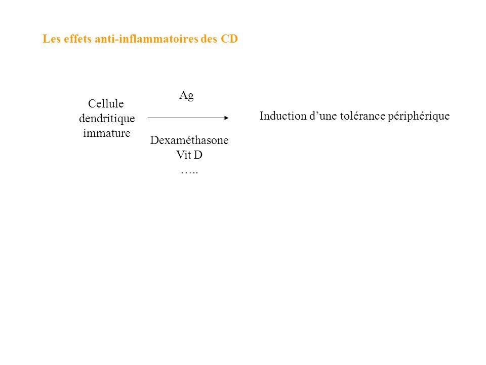 Les effets anti-inflammatoires des CD Cellule dendritique immature Dexaméthasone Vit D ….. Induction dune tolérance périphérique Ag