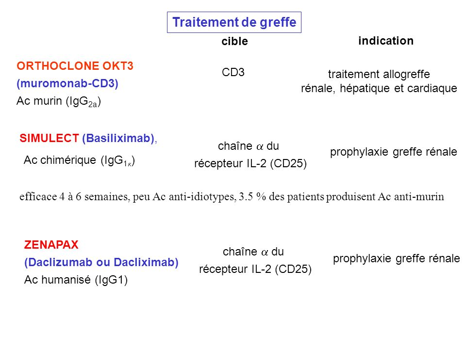 ORTHOCLONE OKT3 (muromonab-CD3) Ac murin (IgG 2a ) Traitement de greffe indication cible SIMULECT (Basiliximab), Ac chimérique (IgG 1 ) efficace 4 à 6