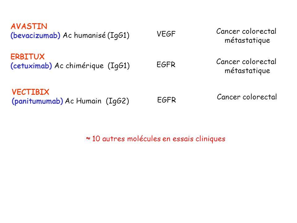 10 autres molécules en essais cliniques AVASTIN (bevacizumab) Ac humanisé (IgG1) VEGF Cancer colorectal métastatique ERBITUX (cetuximab) Ac chimérique