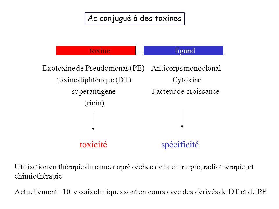 Utilisation en thérapie du cancer après échec de la chirurgie, radiothérapie, et chimiothérapie toxine Anticorps monoclonal Cytokine Facteur de croiss