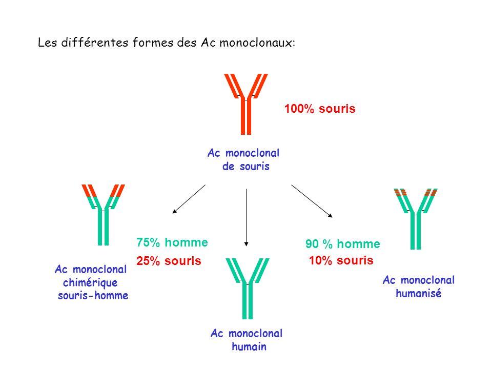 Les différentes formes des Ac monoclonaux: Ac monoclonal de souris 100% souris Ac monoclonal humanisé 90 % homme 10% souris Ac monoclonal chimérique s