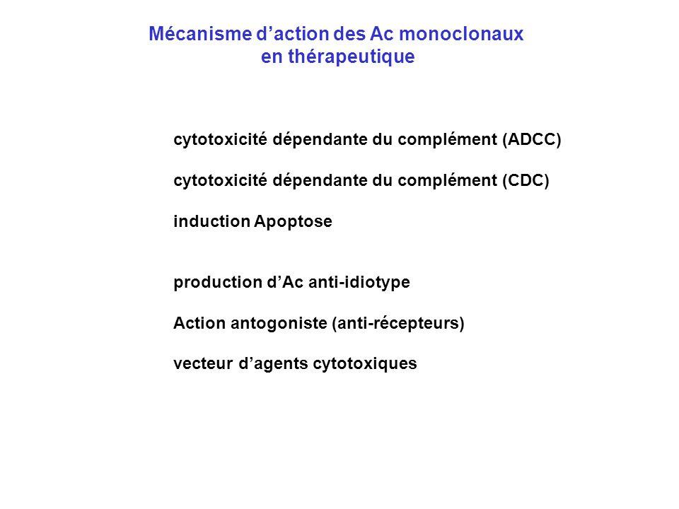 Mécanisme daction des Ac monoclonaux en thérapeutique cytotoxicité dépendante du complément (ADCC) cytotoxicité dépendante du complément (CDC) inducti
