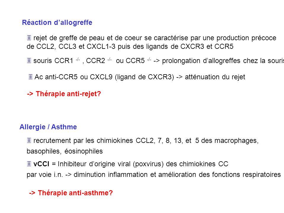 Allergie / Asthme recrutement par les chimiokines CCL2, 7, 8, 13, et 5 des macrophages, basophiles, éosinophiles vCCI = Inhibiteur dorigine viral (pox