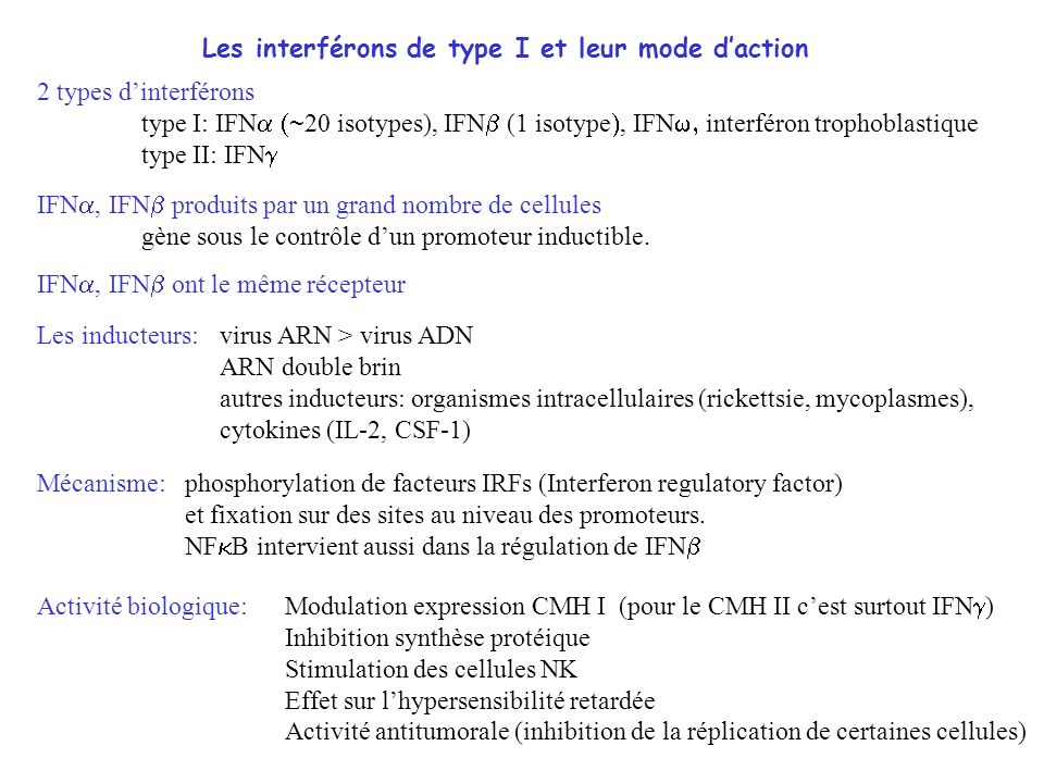 IFN INTRONA (IFN -2b) ROFERON-A (IFN -2a) (voie SC, 3 millions dunités, 3x /semaine) IFN pégylé PEGASYS VIRAFERON-PEG (voie SC) IFN alfacon ( consensus) INFERGEN (retiré en mai 2006) (voie SC) triple action : action anti-virale (inhibition de la réplication virale) action immuno-régulatrice (augmentation activité des cellules NK et macrophages) action anti-proliférative (allongement de toutes les phases du cycle cellulaire) Thérapie anti-virale Indication cancéreuses : leucémies, lymphomes, myélomes, mélanomes, cancer du rein (stade avancé)...