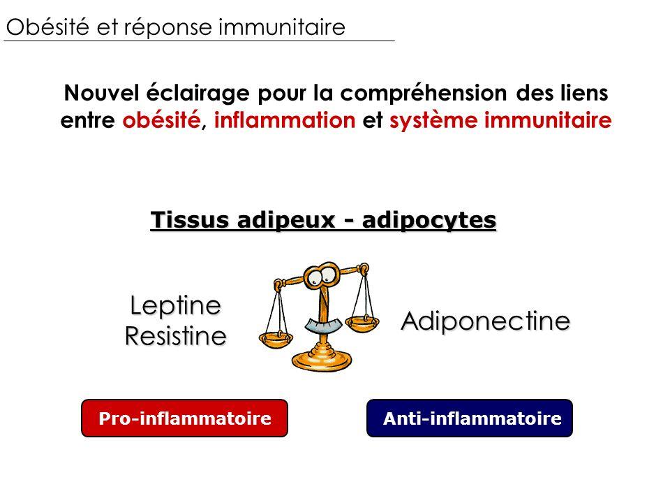 Obésité et réponse immunitaire Nouvel éclairage pour la compréhension des liens entre obésité, inflammation et système immunitaire Tissus adipeux - adipocytes Pro-inflammatoireAnti-inflammatoire LeptineResistine Adiponectine