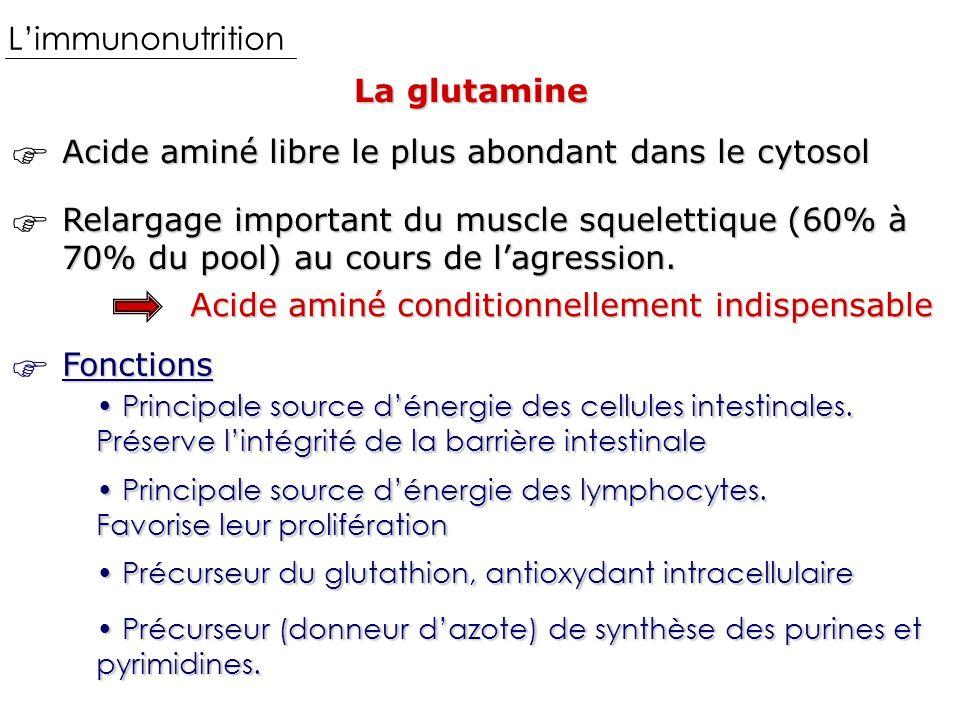 Limmunonutrition La glutamine Acide aminé libre le plus abondant dans le cytosol Relargage important du muscle squelettique (60% à 70% du pool) au cours de lagression.