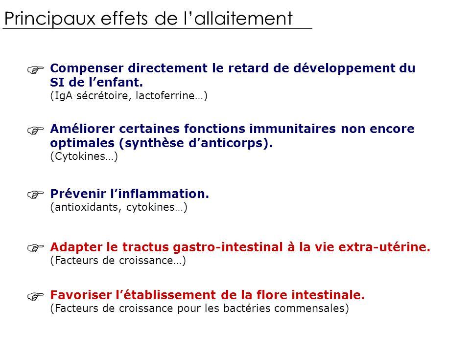 Principaux effets de lallaitement Compenser directement le retard de développement du SI de lenfant.