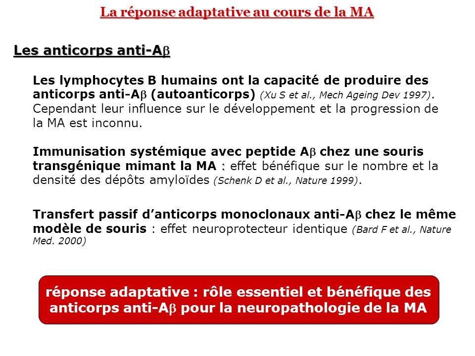 La réponse adaptative au cours de la MA Les anticorps anti-A : Immunisation systémique avec peptide A chez une souris transgénique mimant la MA : effe