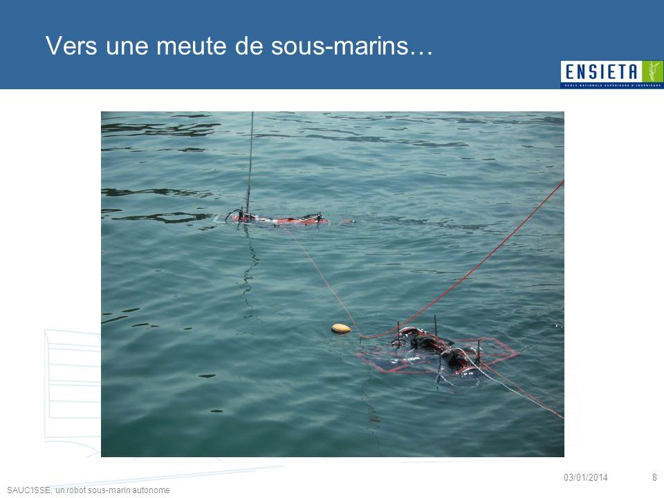 SAUC'ISSE, un robot sous-marin autonome 03/01/20148 Vers une meute de sous-marins…