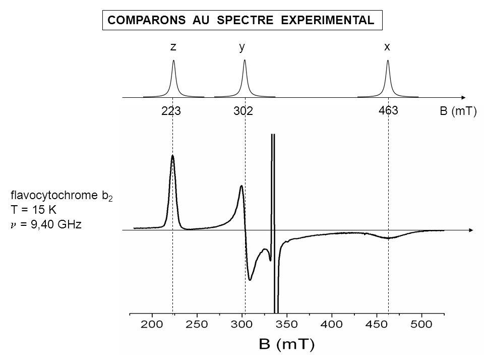 COMPARONS AU SPECTRE EXPERIMENTAL flavocytochrome b 2 T = 15 K = 9,40 GHz B (mT) 463 302223 xyz