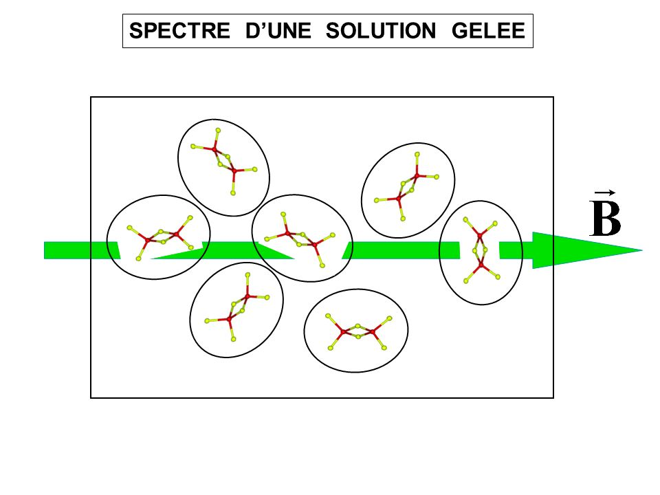 SPECTRE DUNE SOLUTION GELEE