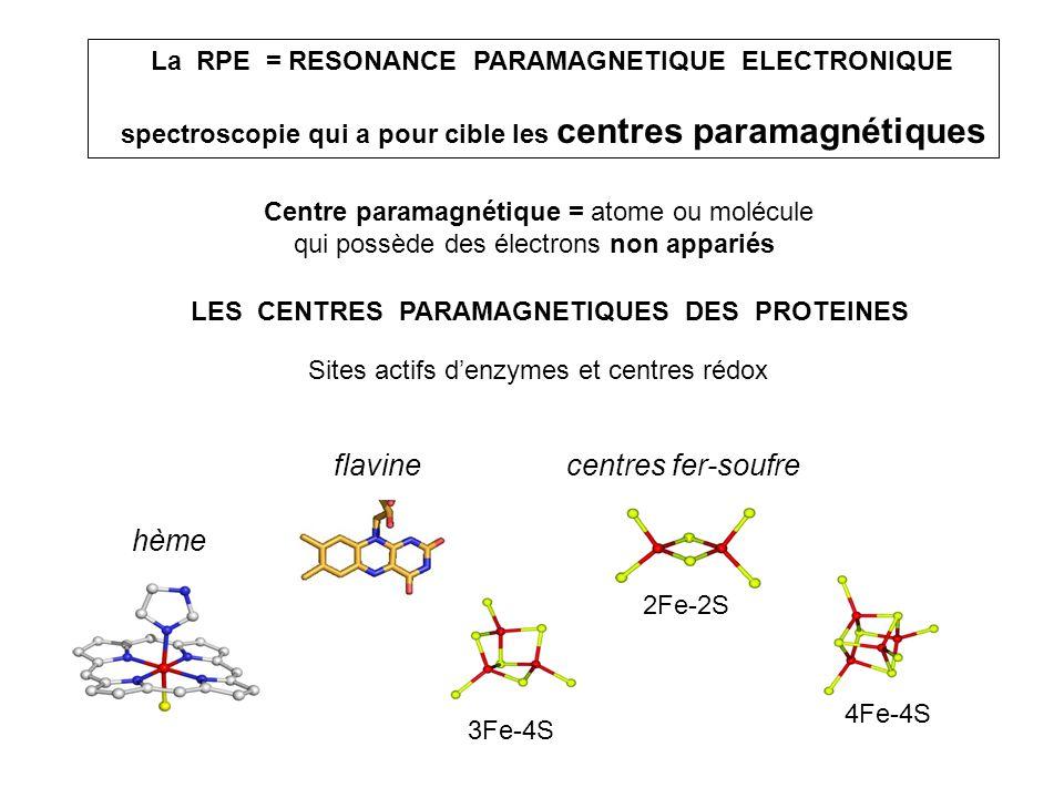 hème centres fer-soufre 2Fe-2S 3Fe-4S 4Fe-4S flavine LES CENTRES PARAMAGNETIQUES DES PROTEINES La RPE = RESONANCE PARAMAGNETIQUE ELECTRONIQUE spectros