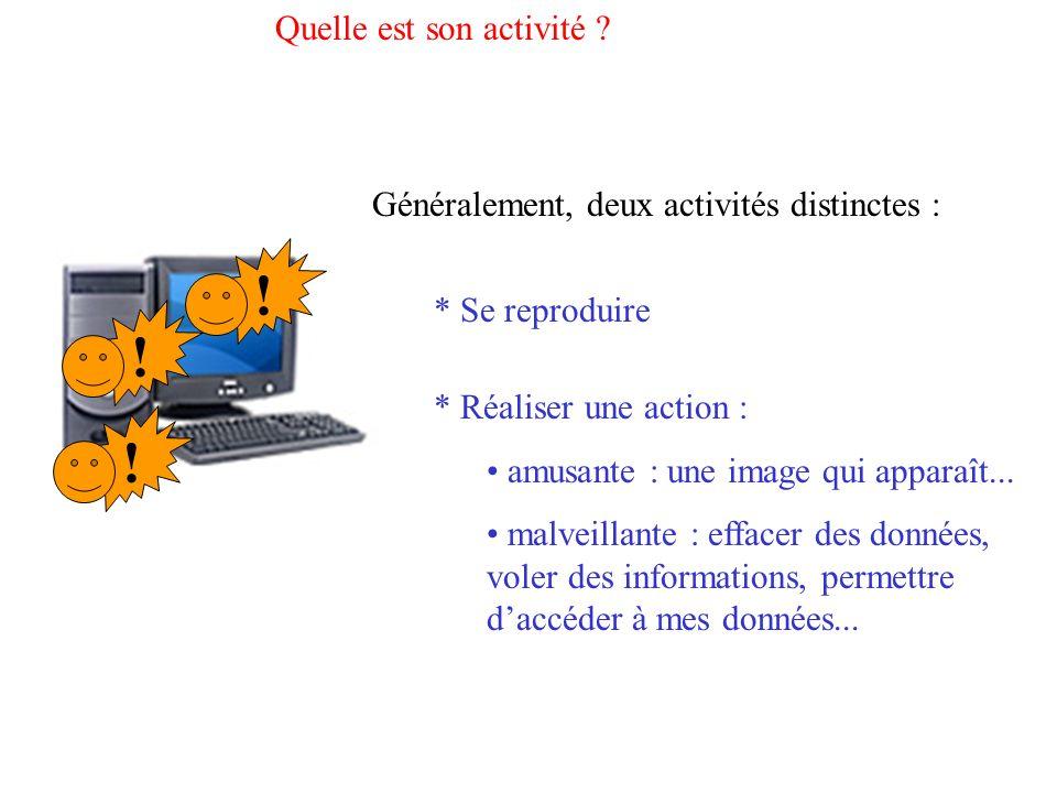 Quelle est son activité ? !!! Généralement, deux activités distinctes : * Se reproduire * Réaliser une action : amusante : une image qui apparaît... m