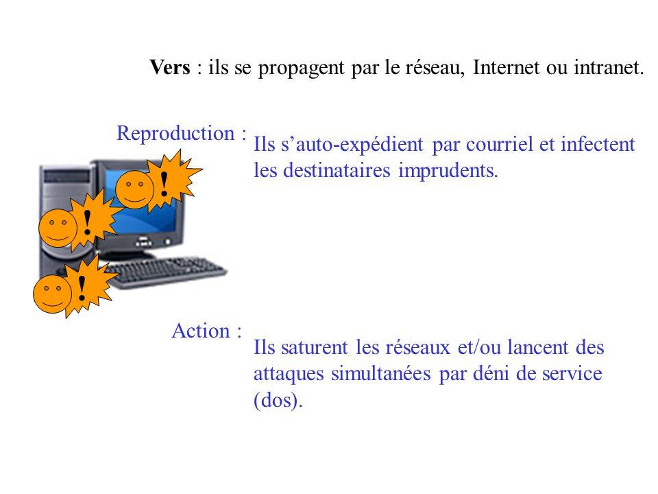 !!! Vers : ils se propagent par le réseau, Internet ou intranet. Ils sauto-expédient par courriel et infectent les destinataires imprudents. Ils satur