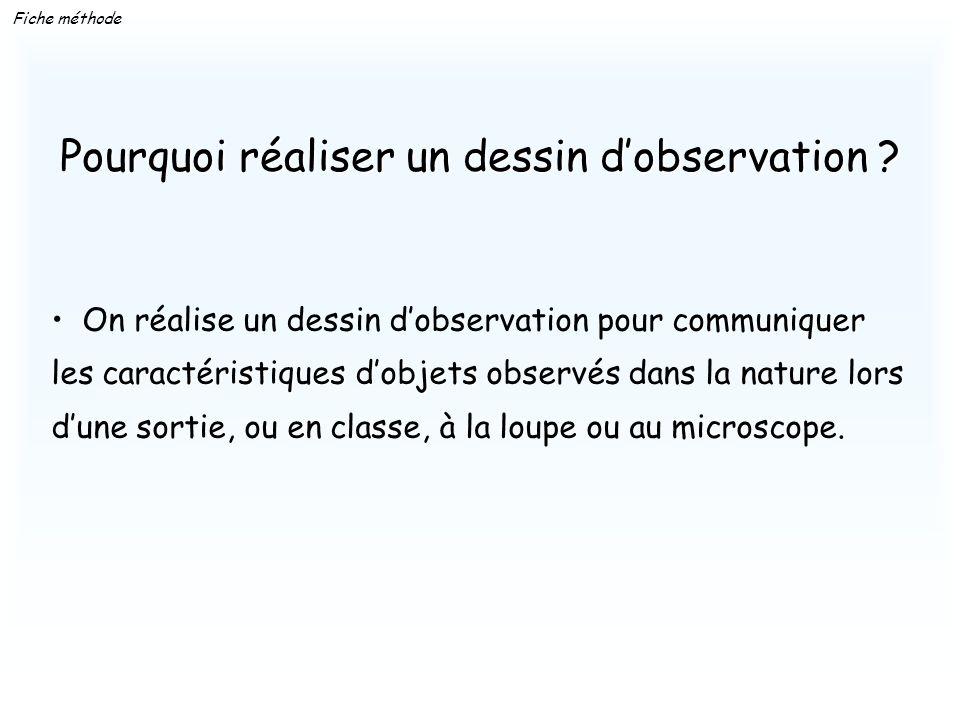 Fiche méthode communiquer On réalise un dessin dobservation pour communiquer caractéristiquesdobjets les caractéristiques dobjets observés dans la nat