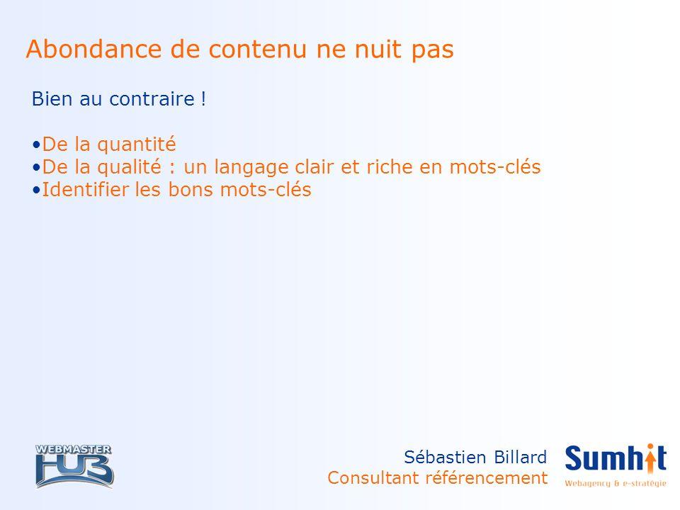 Sébastien Billard Consultant référencement Abondance de contenu ne nuit pas Bien au contraire .