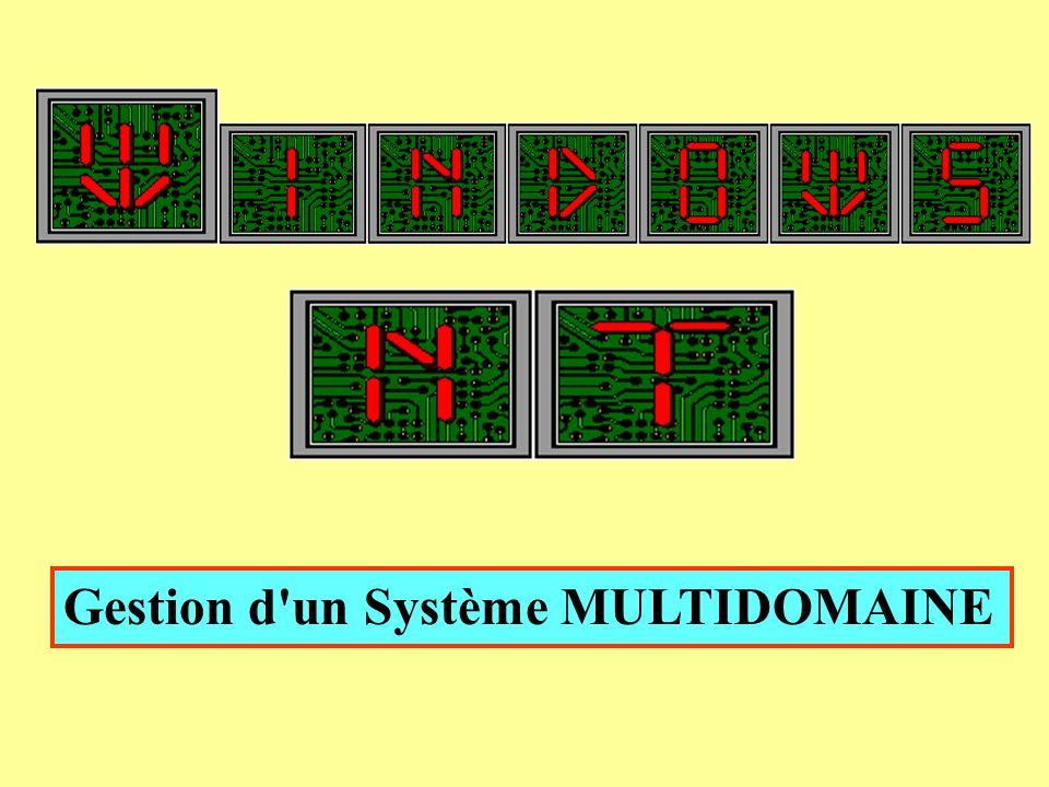 Gestion d'un Système MULTIDOMAINE