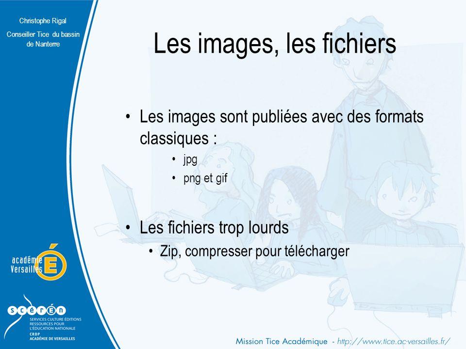 Christophe Rigal Conseiller Tice du bassin de Nanterre Quels formats de publication .