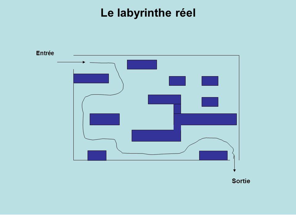 Le labyrinthe réel Sortie Entrée
