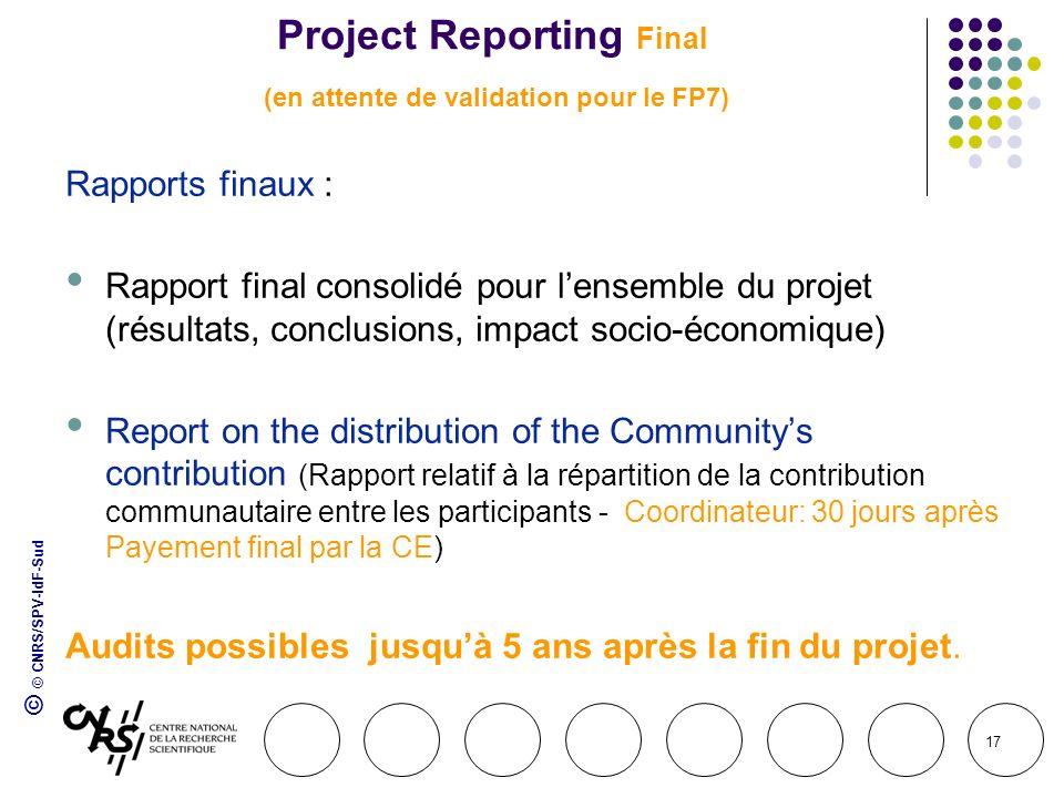 © © CNRS/SPV-IdF-Sud 17 Project Reporting Final (en attente de validation pour le FP7) Rapports finaux : Rapport final consolidé pour lensemble du pro