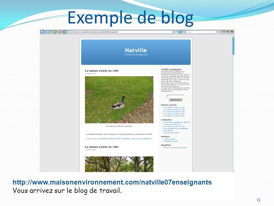NATURE EN VILLE Création du BLOG13 http://www.maisonenvironnement.com/natville07enseignants Vous arrivez sur le blog de travail.