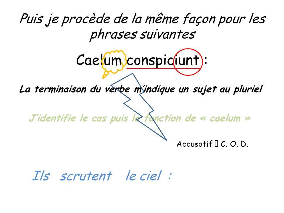 Puis je procède de la même façon pour les phrases suivantes Caelum conspiciunt : La terminaison du verbe mindique un sujet au pluriel Jidentifie le ca