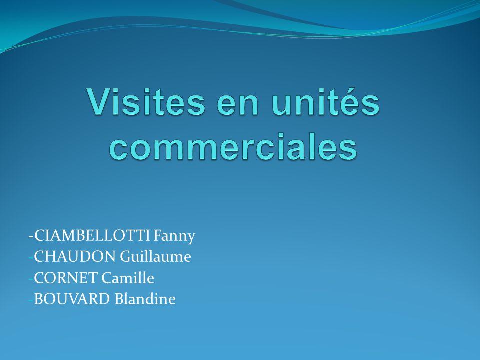 -CIAMBELLOTTI Fanny - CHAUDON Guillaume - CORNET Camille - BOUVARD Blandine