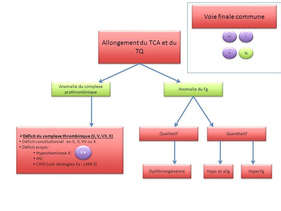 Allongement du TCA Allongement du TQ Baisse du TP < 70% Allongement du TQ Baisse du TP < 70% TQ TCA TT TQ N TCA (T+M) Non corrigé : ACC anti facteur Syndrome anti-PL Non corrigé : ACC anti facteur Syndrome anti-PL Corrigé : Hémophilie A/B Willebrand Déficits en XI, XII, PK, KHPM Corrigé : Hémophilie A/B Willebrand Déficits en XI, XII, PK, KHPM TCA N TQ (T+M) Non corrigé : ACC anti-VII Non corrigé : ACC anti-VII Corrigé : Déficit en VII Début de ttt AVK ou déficit en vit.