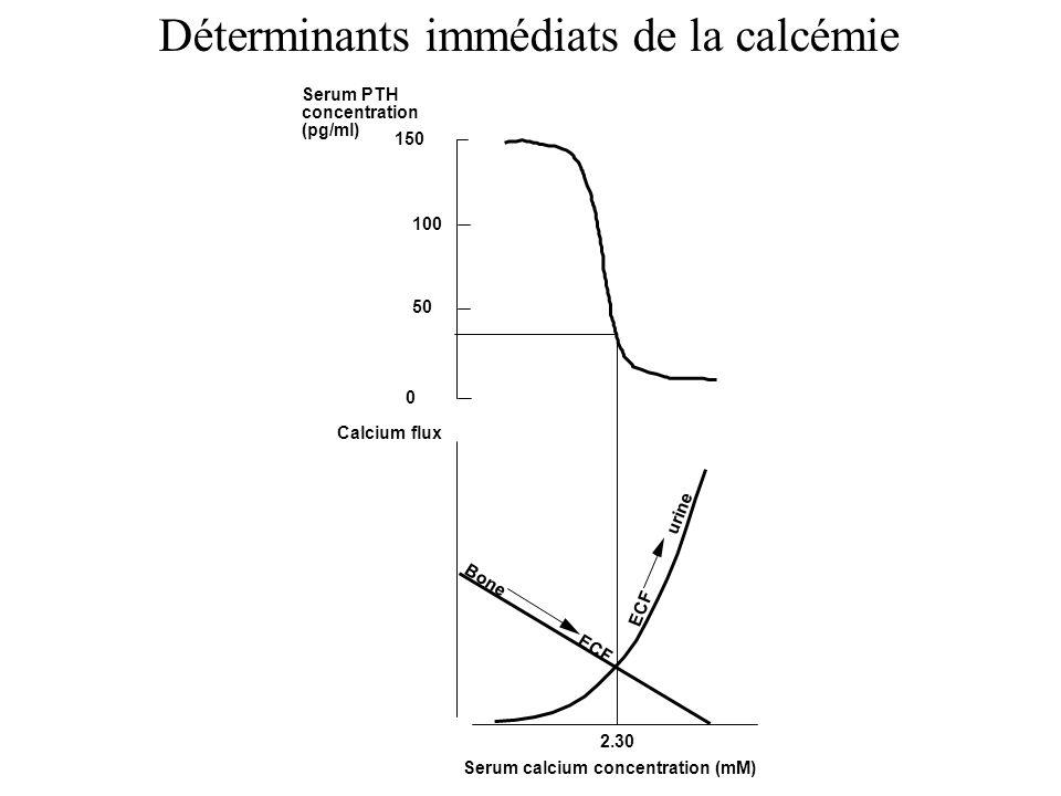 Serum calcium concentration (mM) Calcium flux ECF urine Bone ECF 2.30 150 0 Serum PTH concentration (pg/ml) 100 50 Déterminants immédiats de la calcémie