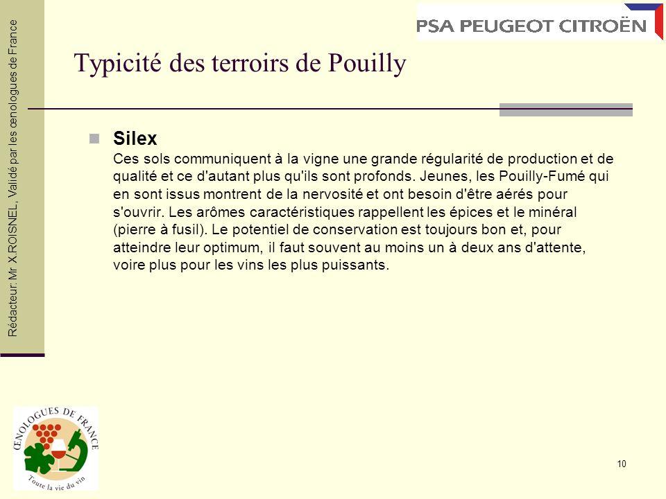 10 Typicité des terroirs de Pouilly Silex Ces sols communiquent à la vigne une grande régularité de production et de qualité et ce d'autant plus qu'il