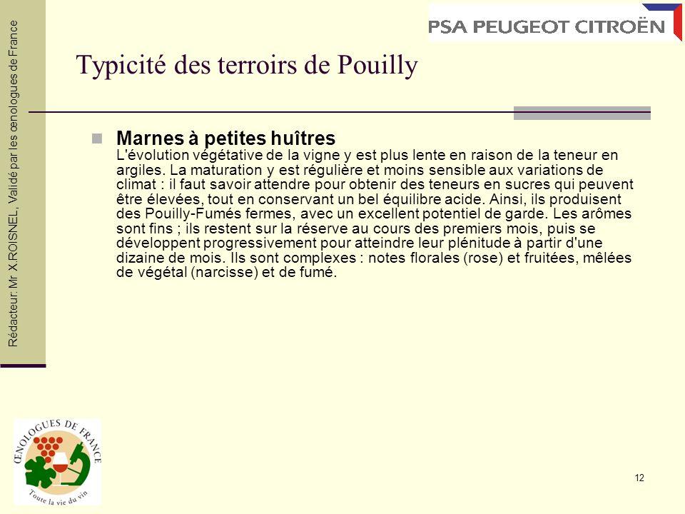 12 Typicité des terroirs de Pouilly Marnes à petites huîtres L'évolution végétative de la vigne y est plus lente en raison de la teneur en argiles. La