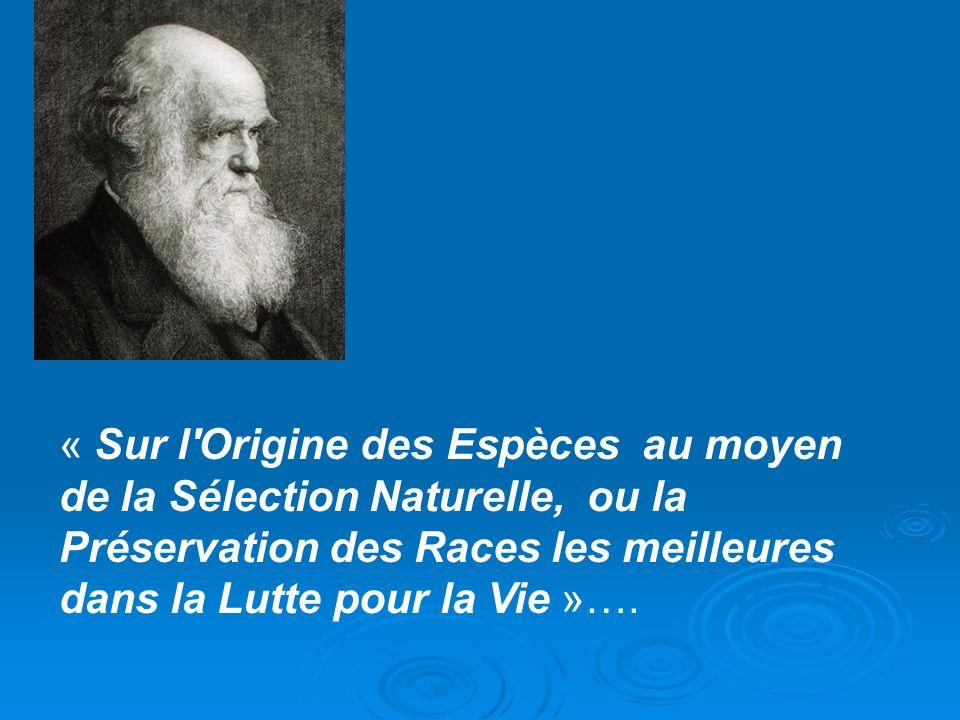 Lamarck 1744- 1829 Le transformisme, rival du catastrophisme