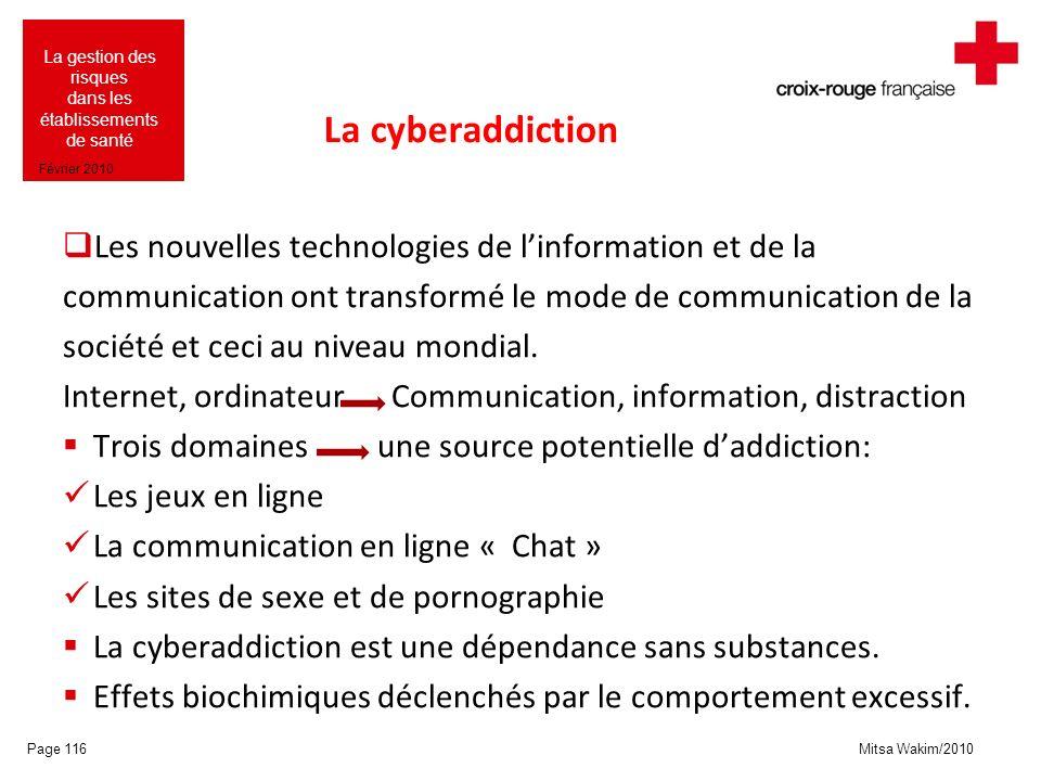 Mitsa Wakim/2010 La gestion des risques dans les établissements de santé Février 2010 La cyberaddiction Les nouvelles technologies de linformation et