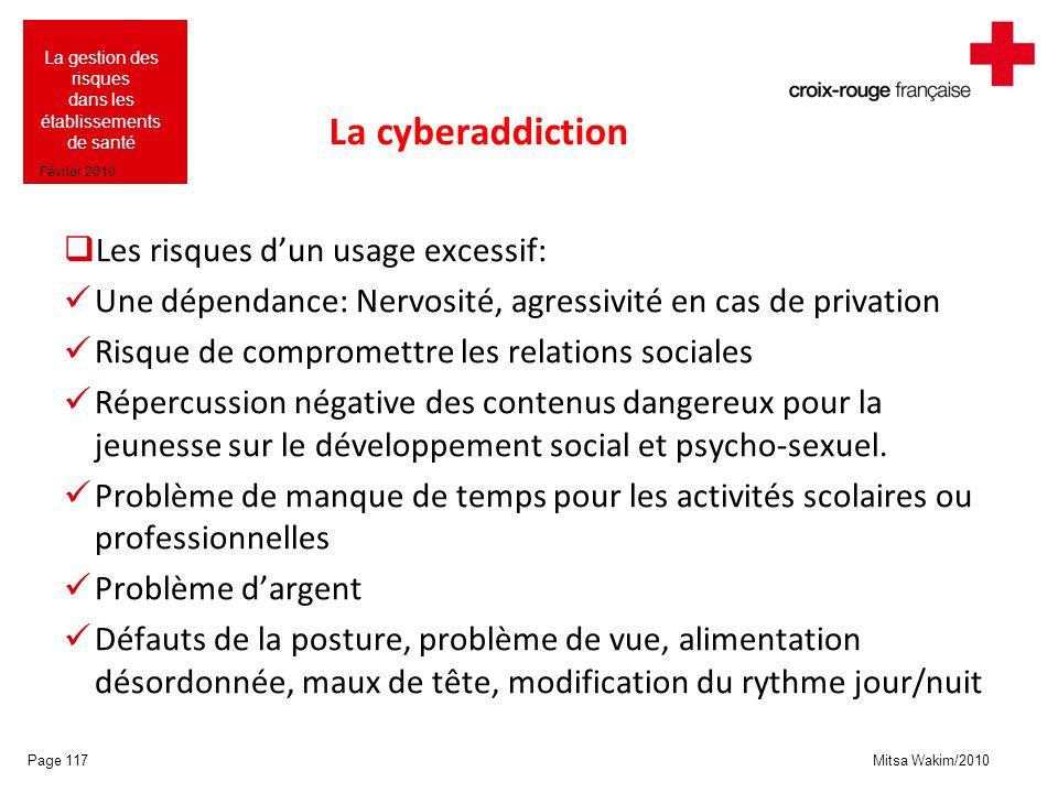 Mitsa Wakim/2010 La gestion des risques dans les établissements de santé Février 2010 La cyberaddiction Les risques dun usage excessif: Une dépendance