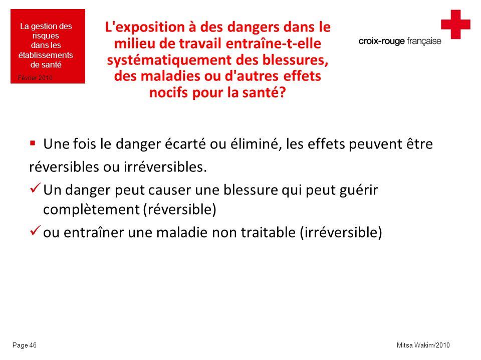 Mitsa Wakim/2010 La gestion des risques dans les établissements de santé Février 2010 L'exposition à des dangers dans le milieu de travail entraîne-t-
