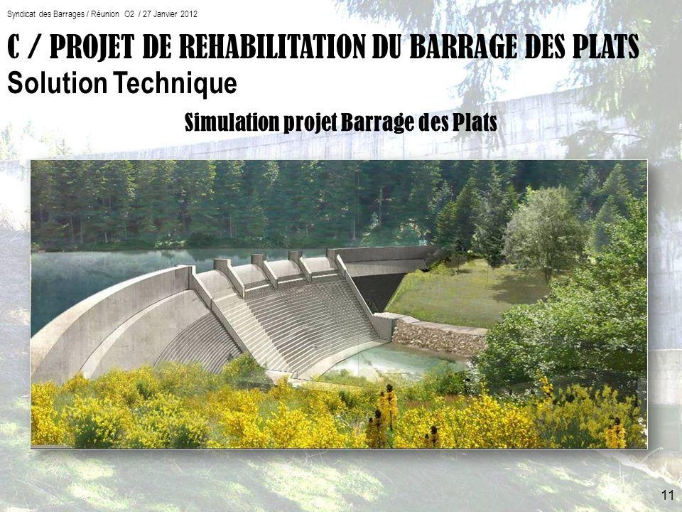 Simulation projet Barrage des Plats Syndicat des Barrages / Réunion O2 / 27 Janvier 2012 11 C / PROJET DE REHABILITATION DU BARRAGE DES PLATS Solution Technique