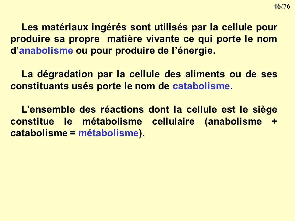 45/76 la pinocytose la membrane sinvagine entraînant les particules dans un canal qui se referme ensuite