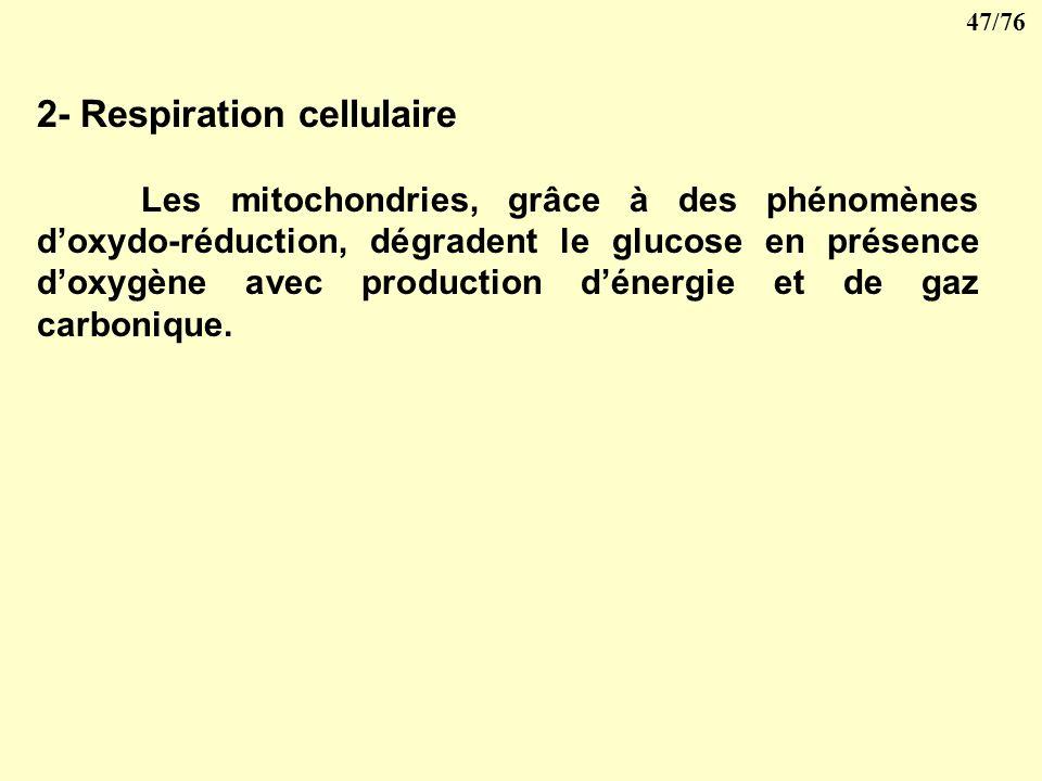 46/76 Les matériaux ingérés sont utilisés par la cellule pour produire sa propre matière vivante ce qui porte le nom danabolisme ou pour produire de l