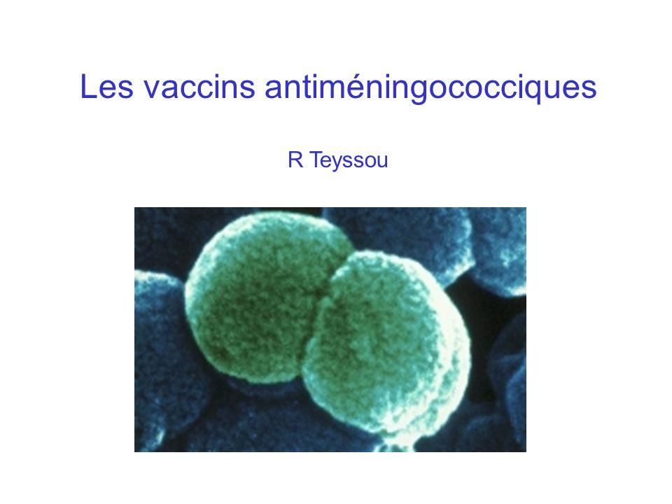 Historique du développement des vaccins Entre 1900 en 1940, vaccin bactérien entier tué En 1930, utilisation de filtrats de culture de N.meningitidis En 1940, Sherp et Rake montrent que des sérums de chevaux immunisés avec des polysaccharides capsulaires protégent les souris.