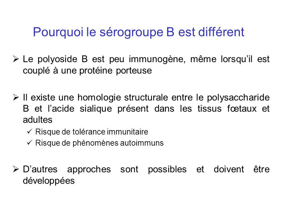 Pourquoi le sérogroupe B est différent Le polyoside B est peu immunogène, même lorsquil est couplé à une protéine porteuse Il existe une homologie structurale entre le polysaccharide B et lacide sialique présent dans les tissus fœtaux et adultes Risque de tolérance immunitaire Risque de phénomènes autoimmuns Dautres approches sont possibles et doivent être développées
