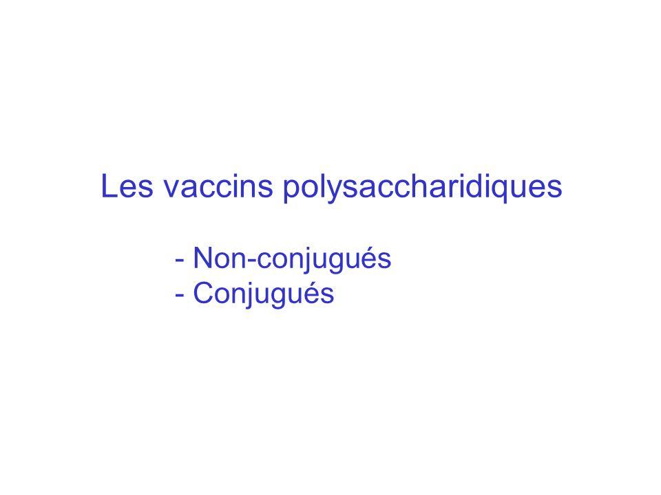 Les vaccins polysaccharidiques - Non-conjugués - Conjugués
