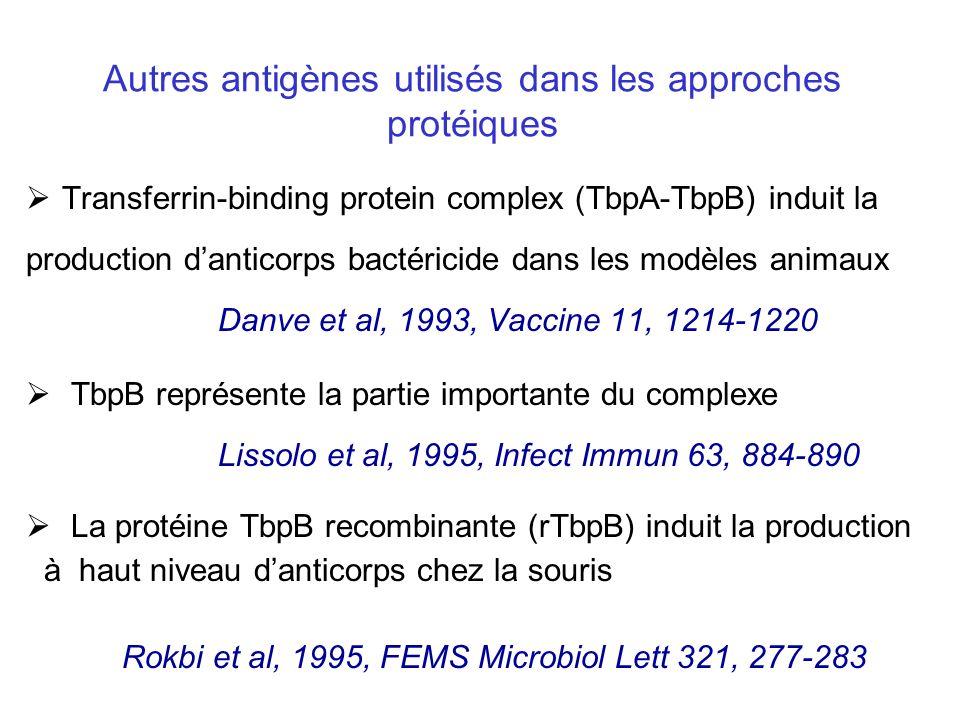 Autres antigènes utilisés dans les approches protéiques Transferrin-binding protein complex (TbpA-TbpB) induit la production danticorps bactéricide dans les modèles animaux Danve et al, 1993, Vaccine 11, 1214-1220 TbpB représente la partie importante du complexe Lissolo et al, 1995, Infect Immun 63, 884-890 La protéine TbpB recombinante (rTbpB) induit la production à haut niveau danticorps chez la souris Rokbi et al, 1995, FEMS Microbiol Lett 321, 277-283
