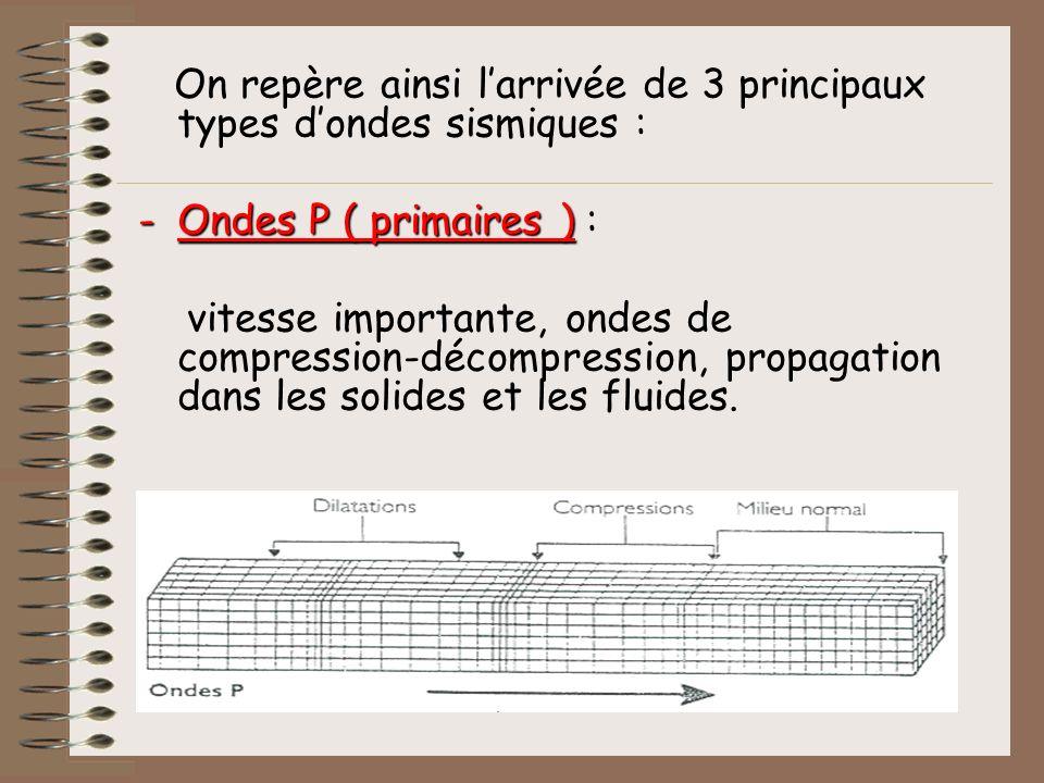 On repère ainsi larrivée de 3 principaux types dondes sismiques : -Ondes P ( primaires ) -Ondes P ( primaires ) : vitesse importante, ondes de compres